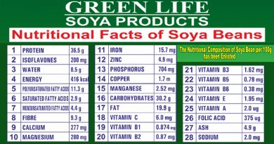 what's inside a soybean – green life soya